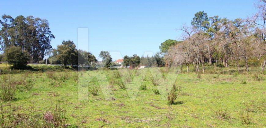 Terreno rústico para venda – Gabrieis, Casa Velha Soure