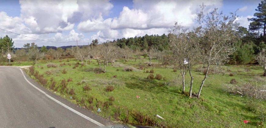Terreno Urbanizável para Venda – Soure